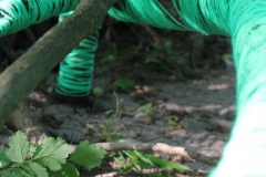 LandArt 1 - Freigeschwemmte Wurzeln mit Wolle umwickelt Foto 2